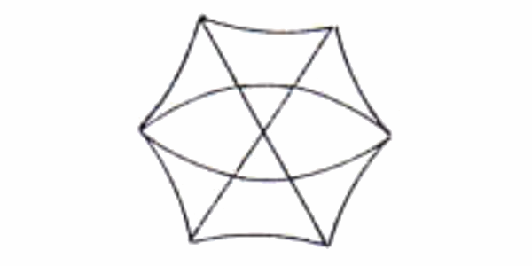 テントの基本構造 ジオデシック構造(ジオテック型)