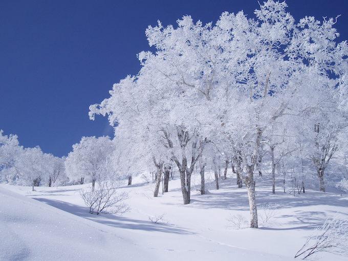 急な雪や凍結でも安心のスノーグラバー