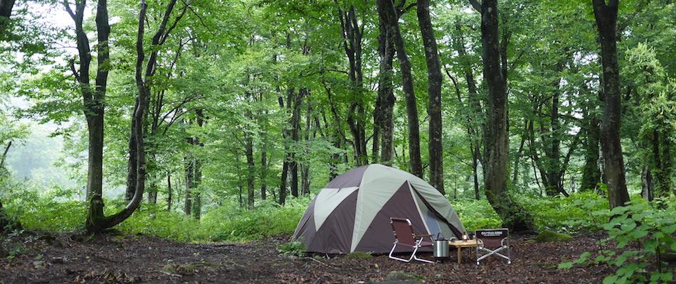 アウトドアライフ 夏の森林キャンプ