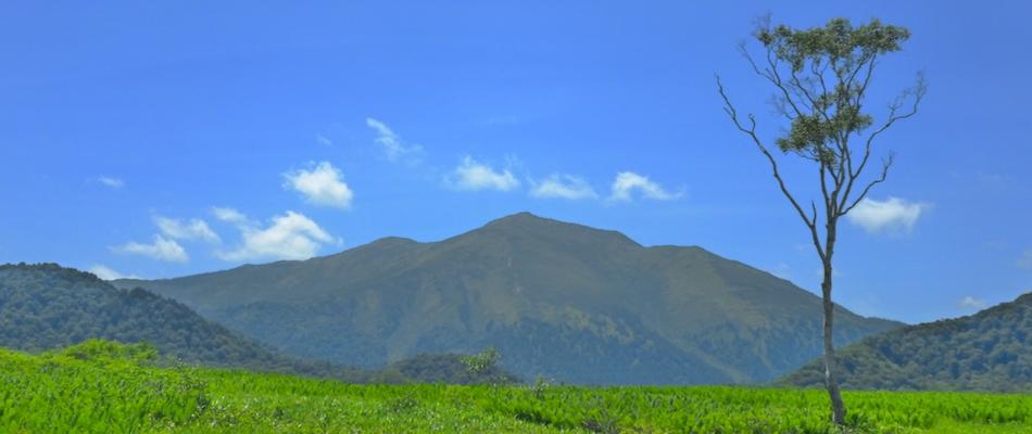 アウトドアライフ 春山の風景
